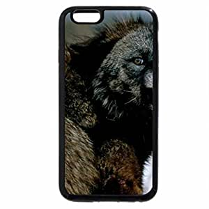 iPhone 6S / iPhone 6 Case (Black) The Wolverine