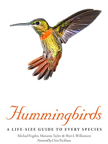 Hummingbirds: A Life-Size Guide to Every Species by [Fogden, Michael,