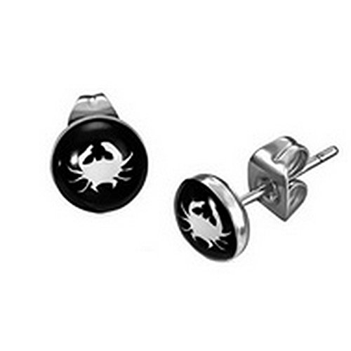 Stainless Steel Cancer Zodiac Earrings product image