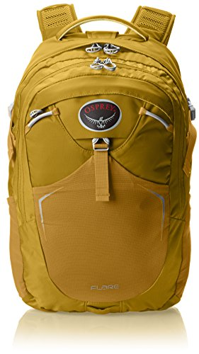 Osprey 8772570782 PARENT Packs Flare Daypack
