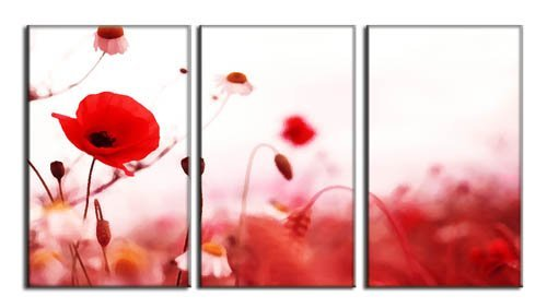 Canvas Prints , Red Poppy Flower Print on Canvas , Framed...