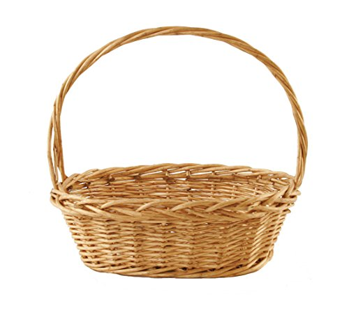 Hand Woven Oval Basket (Wald Imports Brown Willow  Decorative Storage Basket)