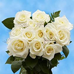 1 Dozen White Roses & Fillers | Wondrous Elegance! Great for Valentine's Day
