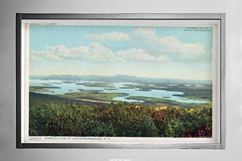 New York Map Company  Birds-Eye View, Lake Winnipesaukee, N. H, 1908 Postcard Vintage Antique Fine Art Reproduction Photo |Size: 7x12|Ready to Frame