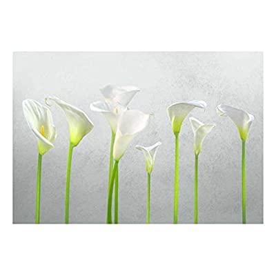Amazing Handicraft, Arum Lilies with Gray Textured Background Wall Mural, Made For You
