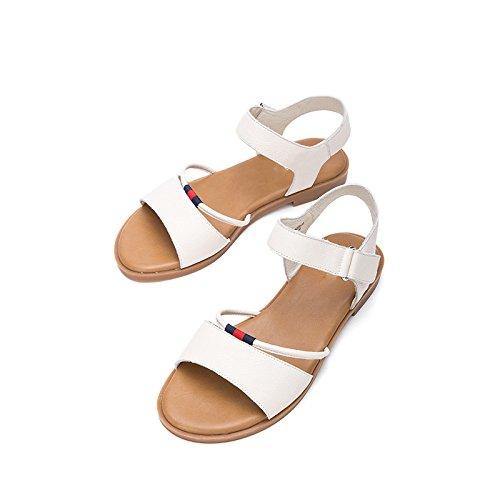 S Mujer de Verano de Punta DHG de Ocasionales Sandalias de Moda Sandalias Color Planas de Sandalias Zapatillas Dulces qxZTY