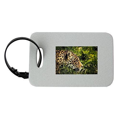 - Jaguar, Wild Cat, Mammal, Zoo, Feline luggage tag
