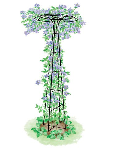 Gardener's Supply Company Essex Trellis, Tall Decorative Flower and/or Vegetable (Company Floral Trellis)