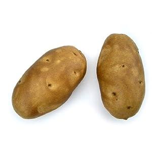 Baking Potato, Artificial Vegetable Fake Food, Bag of 6 52