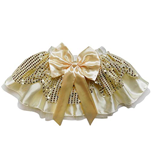 Sparkle Running Costume Skirt Race Tutu, Costume, Princess, Ballet, Dress-Up, 5K (L (One Size for Adults), Belle)