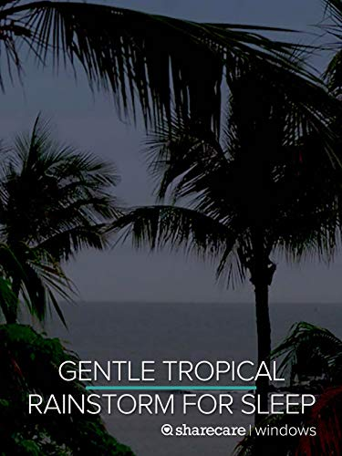 Gentle Tropical Rainstorm for Sleep 9 Hours (Best Rainforest In The World)