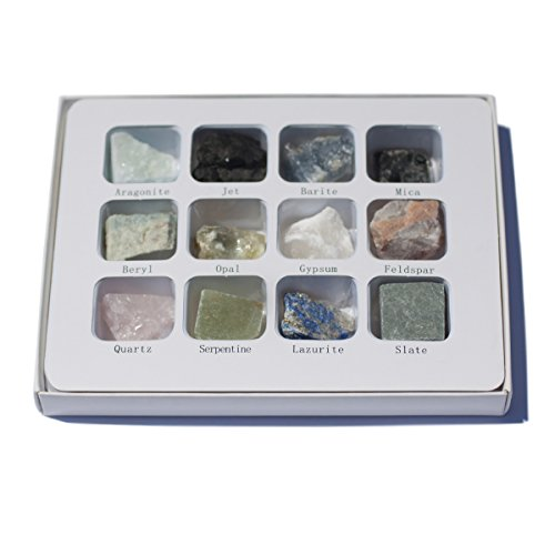 Chillipepperstone 12 Natural Mineral Untumbled Rock Science Stone Collection - Non-Metalic Sample Set (Opal Jet)