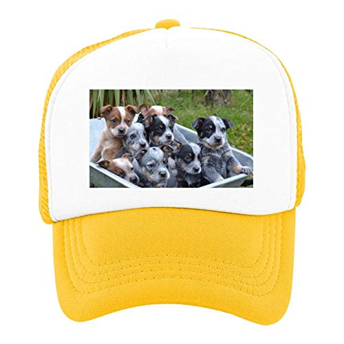 EThomasine Kids Girls Boys Mesh Cap Trucker Hats Australian Cattle Dog Adjustable Hat Yellow by EThomasine