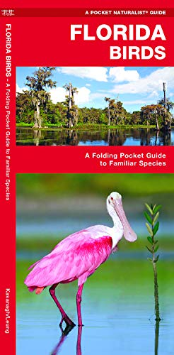 Florida Birds: A Folding Pocket Guide to Familiar Species (Wildlife and Nature Identification)