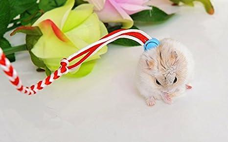 Treasure-house - Arnés de cuerda ajustable para hámster y rata ...
