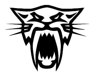 Arctic Cat Head Office