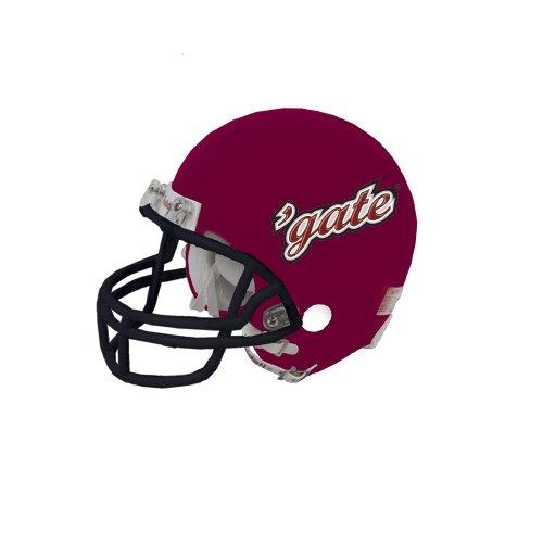 Colgate Riddell Replica Maroon Mini Helmet Gate