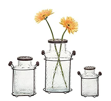 Amazon Fancy Clear Glass Vase Metal Flower Holder Lid W