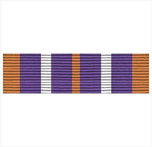 Vanguard Army ROTC Ribbon Unit: N-4-6: AJROTC Service Learning