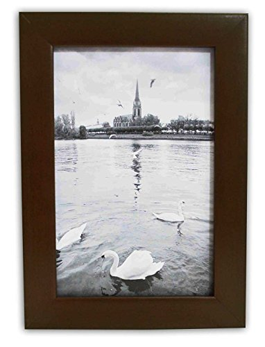 Golden State Art, Expresso Photo Wood Collage Frame with REAL GLASS (4X6) (Picture Frame Expresso compare prices)