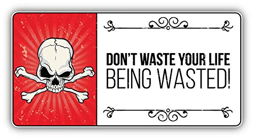 KW Vinyl Magnet Anti Drug Grunge Slogan Don't Waste Your Life Car Bumper (Best Anti Drug Slogans)