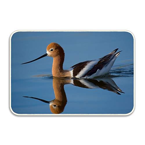 (Lucy Curme Colorful Animal Duck American Avocet Pond Pattern Floor Mat Home Decor Carpet Indoor Rectangle Doormat Kitchen Floor 20