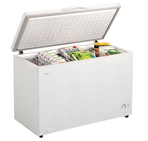 9.6 cu. ft. Chest Freezer