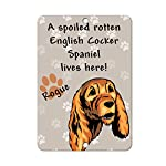 Aluminum Metal Sign Funny Spoiled Rotten English Cocker Spaniel Dog Lives Here Informative Novelty Wall Art Vertical 8INx12IN 4