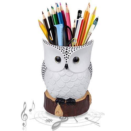 J JHOUSELIFESTYLE Owl Music Box with Brush Holder Function and Free White Pearl, White Owl Rotating as Music Plays, Great Owl Lover Gifts for Women Girls as Home Office Accessories Decorations - White