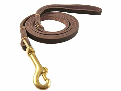 Leather dog training leashes