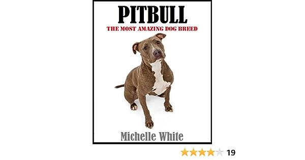 Pitbull Family Breeds