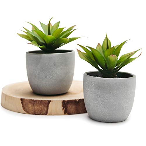 Kurrajong Farmhouse Two Agave Fake Plants in pots – Set of 2 Faux Succulents, 5″ x 4″ Artificial Plant in Pot, Beautiful Feaux Plant for Home Decor or feaux Succulents for Shelf Decor