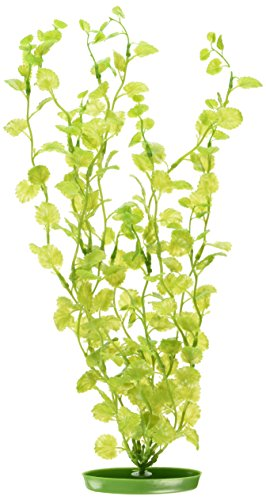 Marina Aquascaper Cardamine Plant, -