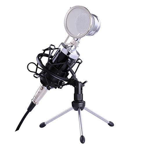 1500 Mic (AW Recording E-1500 Condenser Microphone & Shock Mount & Windproof Net & Desk Stand Tripod for Computer Karaoke)