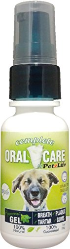 PetzLife Peppermint Oral Care Gel, 1 oz