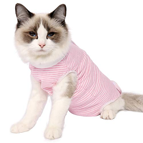 Dotoner Cat Professional Recovery Suit, Surgical Recovery Shirt for Abdominal Wounds Bandages Cone E-Collar Alternative for Cats After Surgery Medical Suit Soft Pets Clothing Indoor (Pink, M)