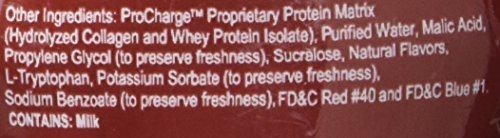 ProCharge Bold Protein Drink