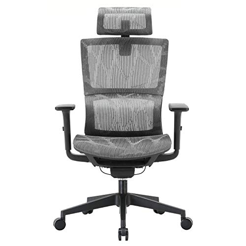 XUER Ergonomic Office Chair with Cozy Lumbar Support and Adjustable 3D Armrest, Computer Desk Chair with Mesh Seat and High Back, Multifunction for Relaxation (Grey)