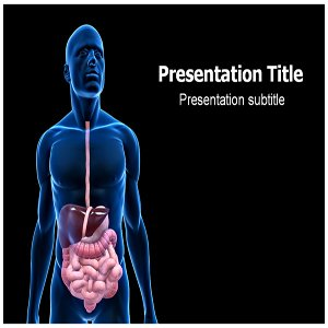 Amazon digestive system powerpoint template digestive system digestive system powerpoint template digestive system powerpoint ppt backgrounds toneelgroepblik Images