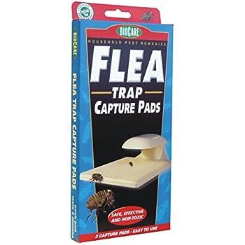 Springstar S103 Flea Trap Capture Pads - 3 Pads Per Box