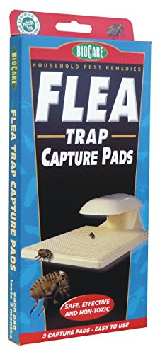Springstar S103 Flea Trap Capture Pads - 3 Pads Per Box by Biocare