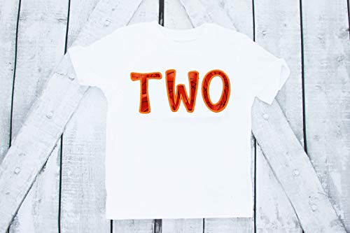 Boy Second Birthday shirt - Basketball, TWO, Sports, Basketball, Two Year, embroidered (parent shirts are available)