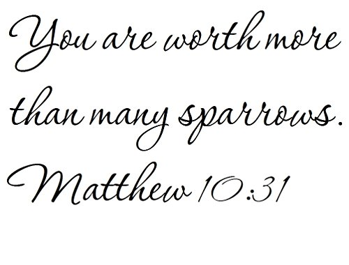 - Tapestry Of Truth - Matthew 10:31 - TOT4679 - Wall and home scripture, lettering, quotes, images, stickers, decals, art, and more! - You are worth more than many sparrows. Matthew 10:31