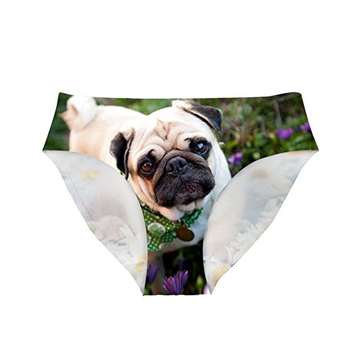 Dellukee Cute Womens Underwear Breathable Hipster Panty Briefs Pug -