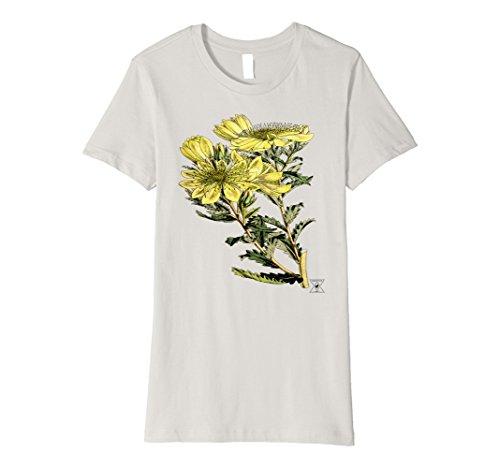womens-wildflower-botanical-by-encycloart-garden-houseplant-tee-large-silver