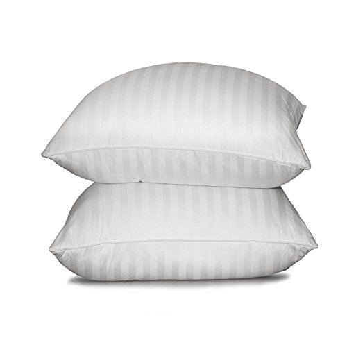 Blue Ridge Home Fashion Supreme 350 Thread Count Cotton Damask White Down Pillow, Jumbo, White