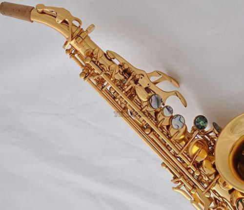 FidgetGear Professional Gold Curved Soprano sax Saxophone Abalone Bb high F# W/case from FidgetGear