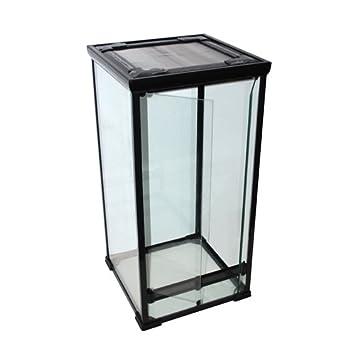 Glass Terrarium 50x50x100 Cm For Chameleons Snakes Gekkos And