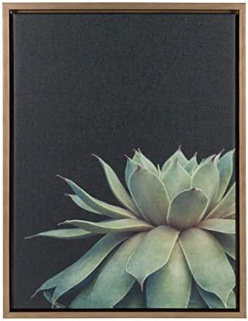 Kate Laurel Sylvie Succulent Framed product image