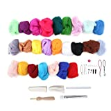 Delaman Needle Felting Kit, 25 Colores de Lana Roving Needle Felting Wool Kit, para Manualidades de Bricolaje Fieltro Principiantes